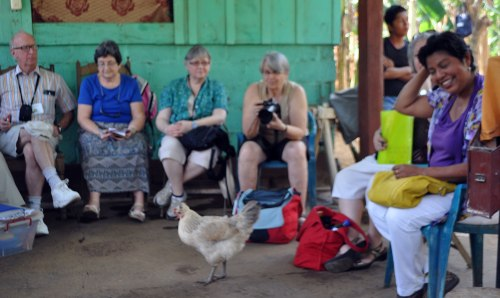 A chicken decided to crash our briefing from the Masaya women's co-op.