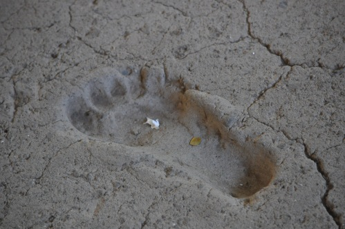6,000 year-old footprint.