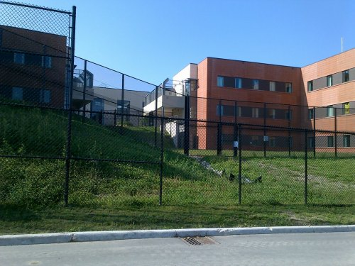 Photograph of the fences scaled by a maximum security patient August 23 at Waypoint Centre for Mental Health Care.
